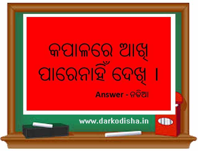 15 odia puzzle question with answer, odia paheli, odia riddles