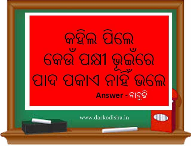 odia puzzle question with answer, odia puzzle question with answer pdf
