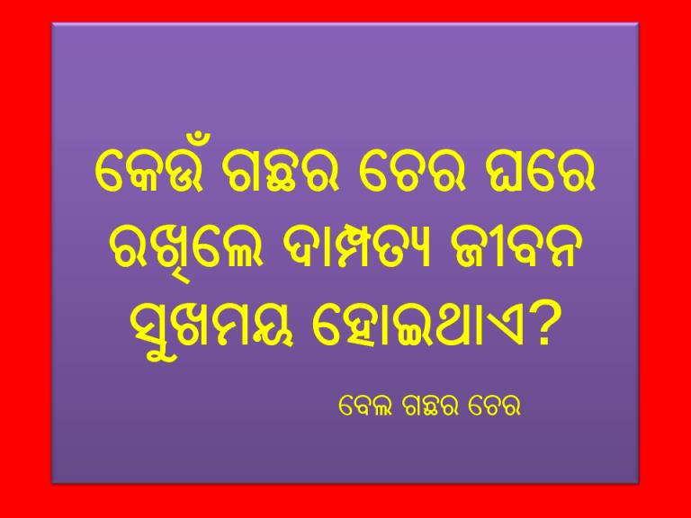 odia double meaning prashna